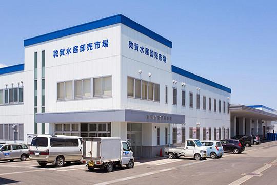 敦賀水産卸売市場