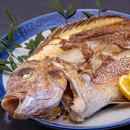 敦賀真鯛の姿焼き(4〜5人前)